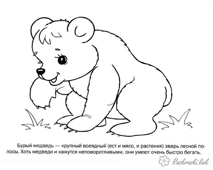 Распечатать раскраски животные с детьми